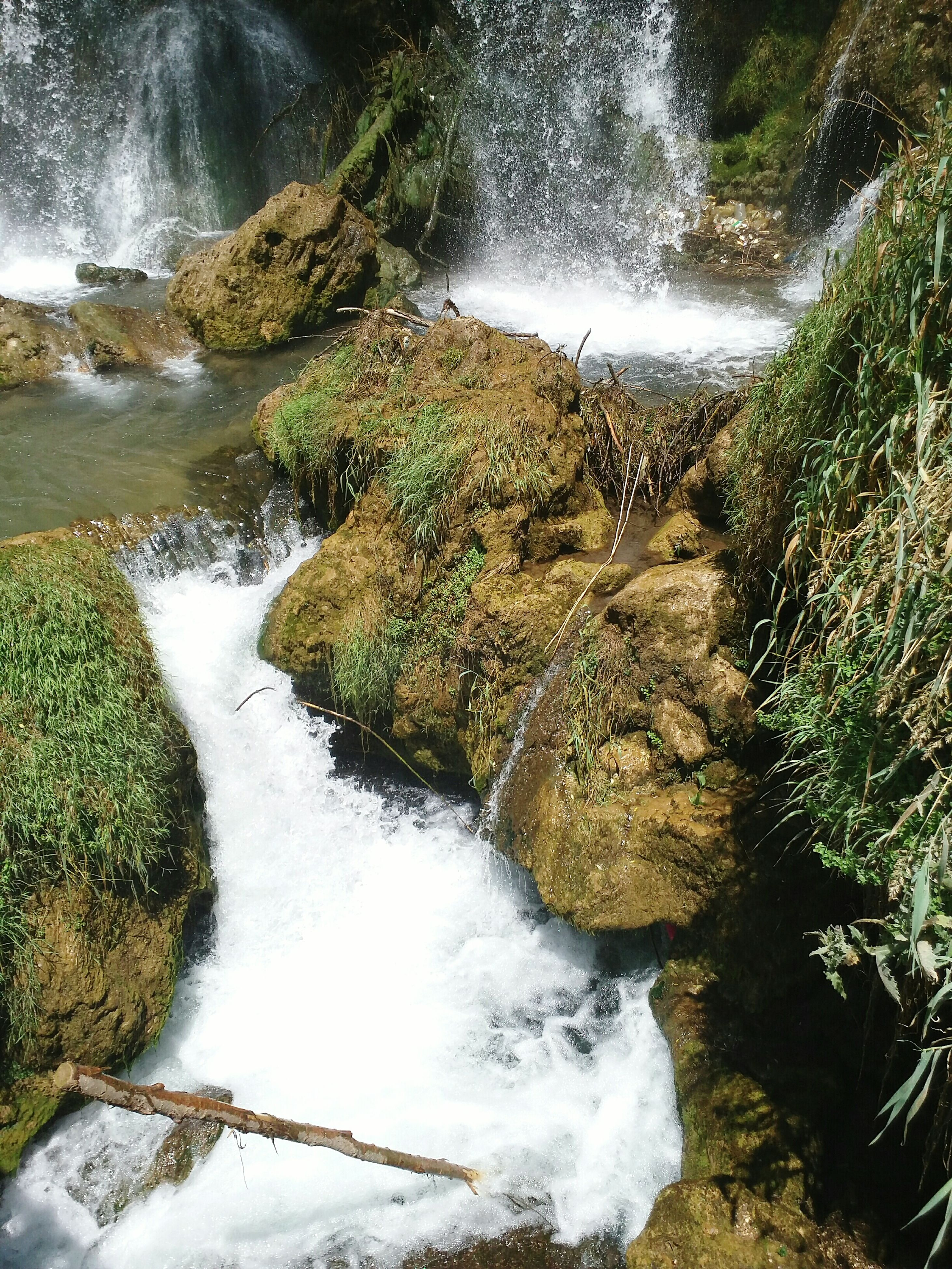 water, flowing water, waterfall, flowing, motion, stream, rock - object, nature, river, beauty in nature, plant, moss, scenics, day, outdoors, green color, no people, growth, rock, tranquility, idyllic, rock formation, tranquil scene, non-urban scene, non urban scene, grass, remote