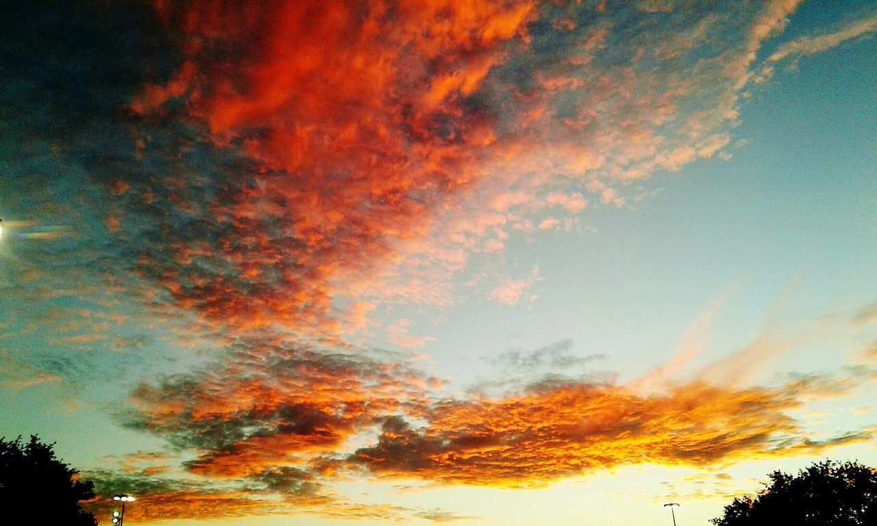beauty in nature, nature, sunset, scenics, sky, low angle view, orange color, tree, tranquility, tranquil scene, majestic, cloud - sky, dramatic sky, silhouette, no people, idyllic, outdoors, day