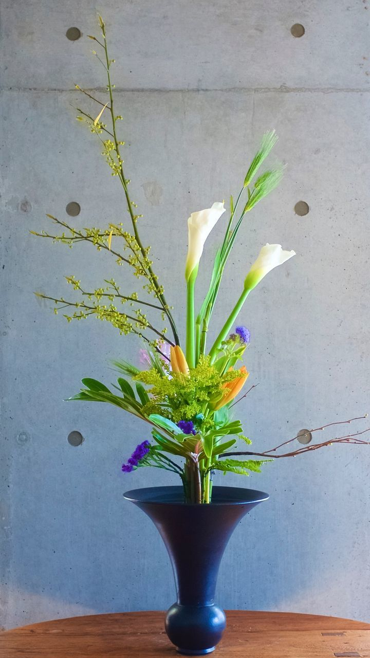 Ikebana Plant On Table Against Wall