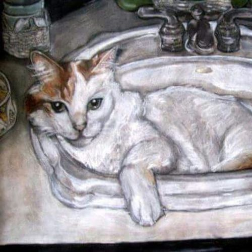 Please like my page. https://www.facebook.com/fabpetportraits?ref=hl Shameless Self-promotion Cat Cats Catsofinstagram