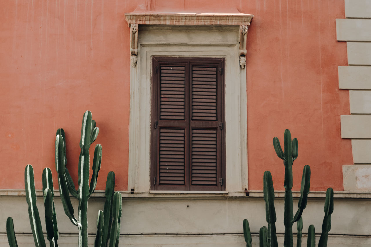 Architecture Building Exterior Built Structure Cactus Day Details Exterior Home Italy No People Organized Outdoors Pastel Colors Rome South South Europe Spring Window