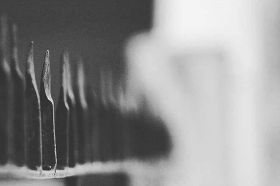 Focused Linefocus Bnw Monochrome Grayscale Bnwlovers Bnw_society Bnw_captures Bnw_life Bnw_demand Canonphotography Canon_photos 1200D 300mm Magic Photographyislife Instadaily Photographybros