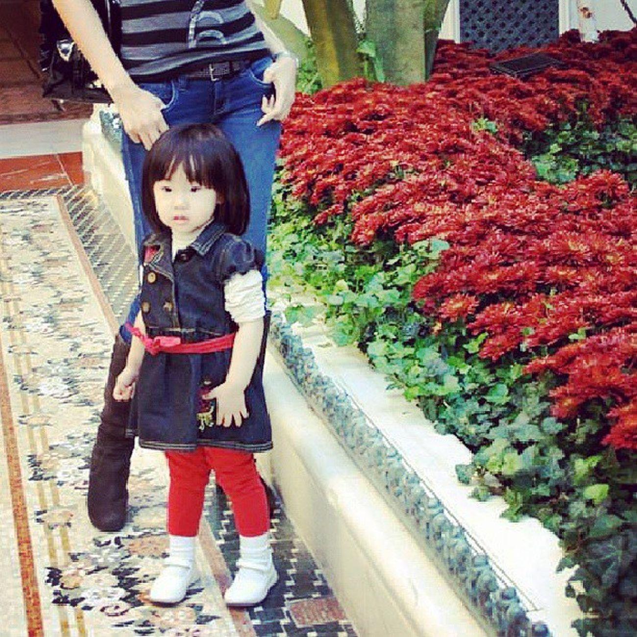 ♥♡♥♡ TBT  TwoByAll SushiCute IAmViet Bellagio garden vegas LasVegas sophia nhi