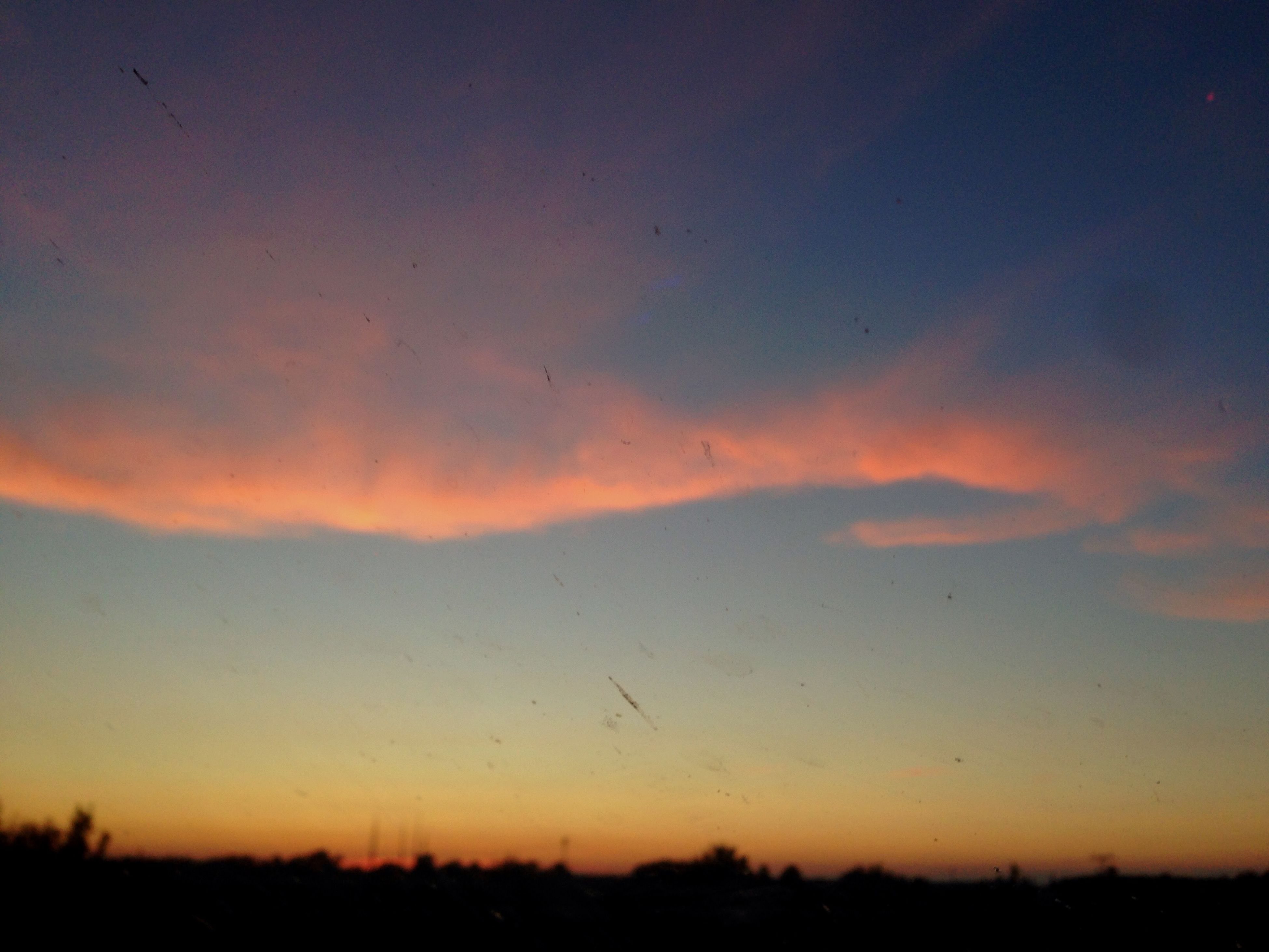 sunset, silhouette, tranquil scene, sky, scenics, tranquility, beauty in nature, orange color, flying, nature, animal themes, bird, landscape, idyllic, dusk, animals in the wild, wildlife, outdoors, field, outline