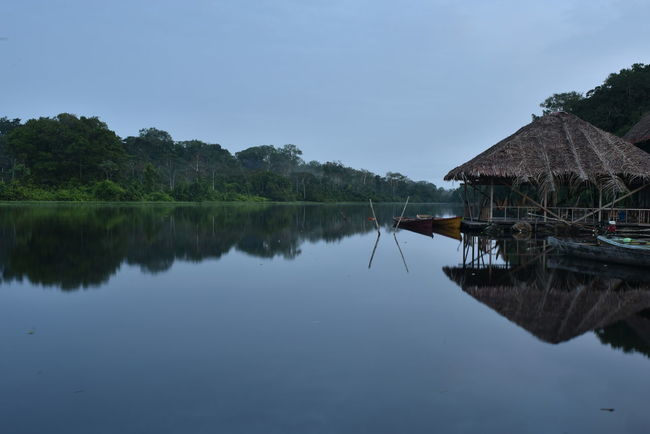 Amazonia Calm Distant Exploring Geometry Horizontal Symmetry Lake Lakeshore Outdoors Peru Pond Reflection Rippled River Riverbank Standing Water Symmetry Tranquil Scene Tranquility Tree Trip Voyage Water Waterfront
