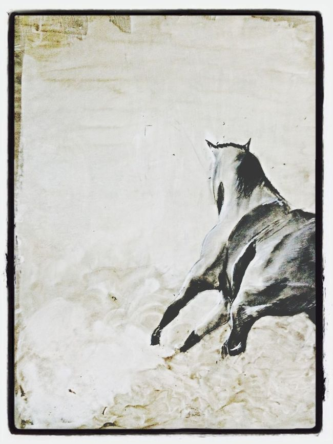 second mix media drawing finished.. Horse Mixmedia Fineart