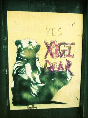 Yogi Bear in Vancouver by Kharis O'Connell