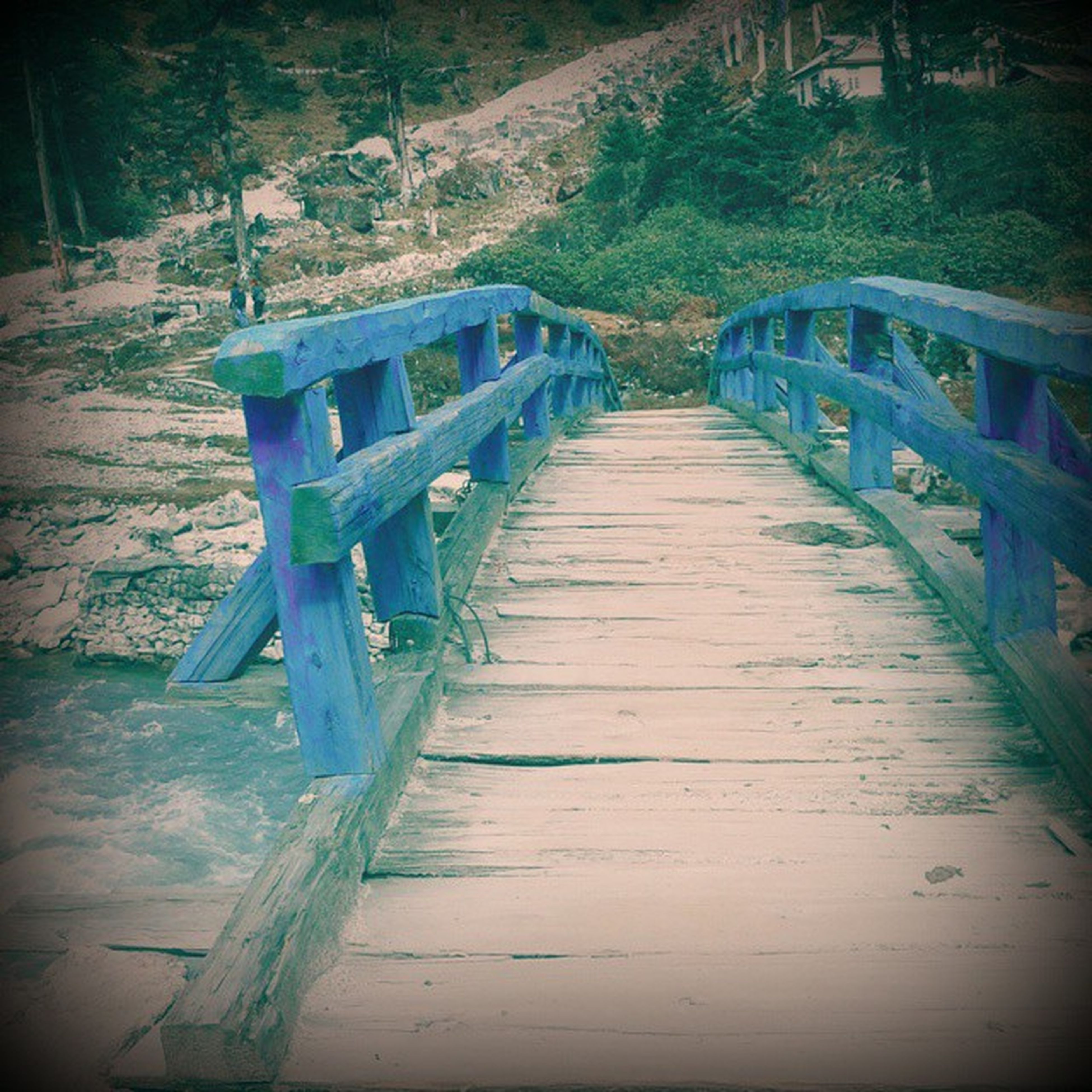 the way forward, wood - material, railing, footbridge, diminishing perspective, bridge - man made structure, boardwalk, tree, connection, tranquility, forest, vanishing point, transportation, wood, wooden, empty, nature, narrow, long, tranquil scene