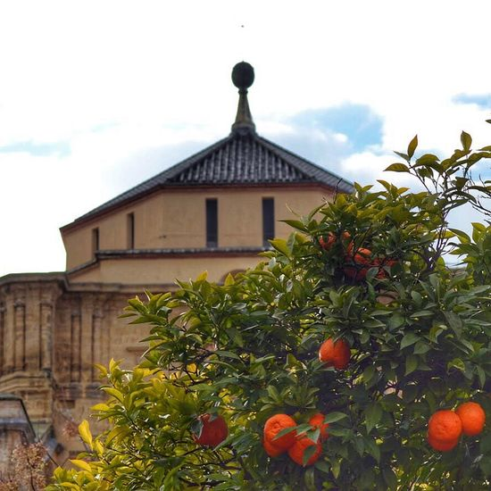 Ispanya SPAIN España Córdoba Kurtuba Endülüs Andalucía Andalusia Mosque Mezquita Cami Mesjid الاندلس كرطبة