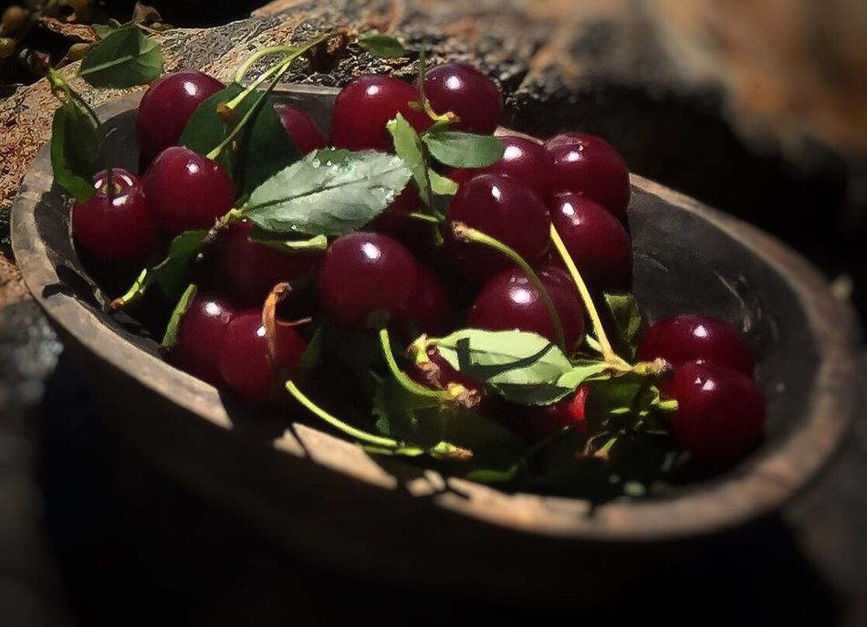 Sour Cherry... The Essence Of Summer Taste Of Summer  EyeEm Masterclass Shootermag Exceptional Photographs EyeEm Best Shots Eye4photography  Seasonal Photography Sour Cherry The OO Mission Enjoying Life Beauty In Everything https://youtu.be/G6KR9fwHK-0