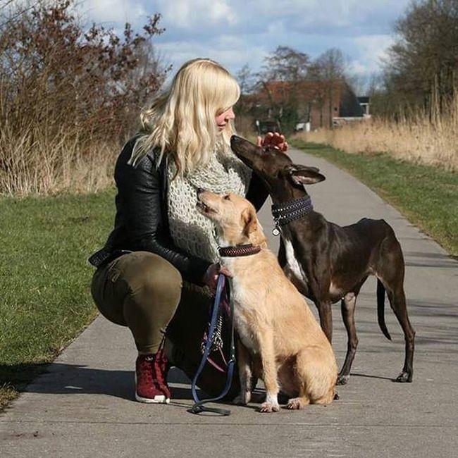HillsBestFriends Hondje Honden Doggieselfie
