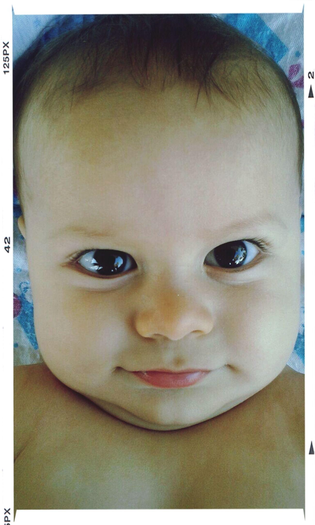 Mi sobrino... Hello World