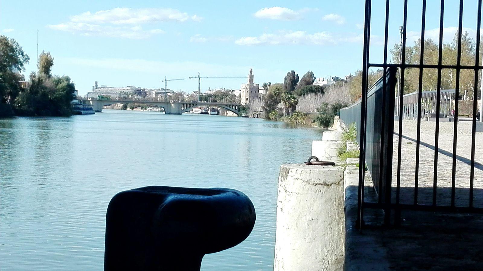 Taking Photos Hello World Enjoying Life My Town Mi Ciudad Guadalquivir España🇪🇸