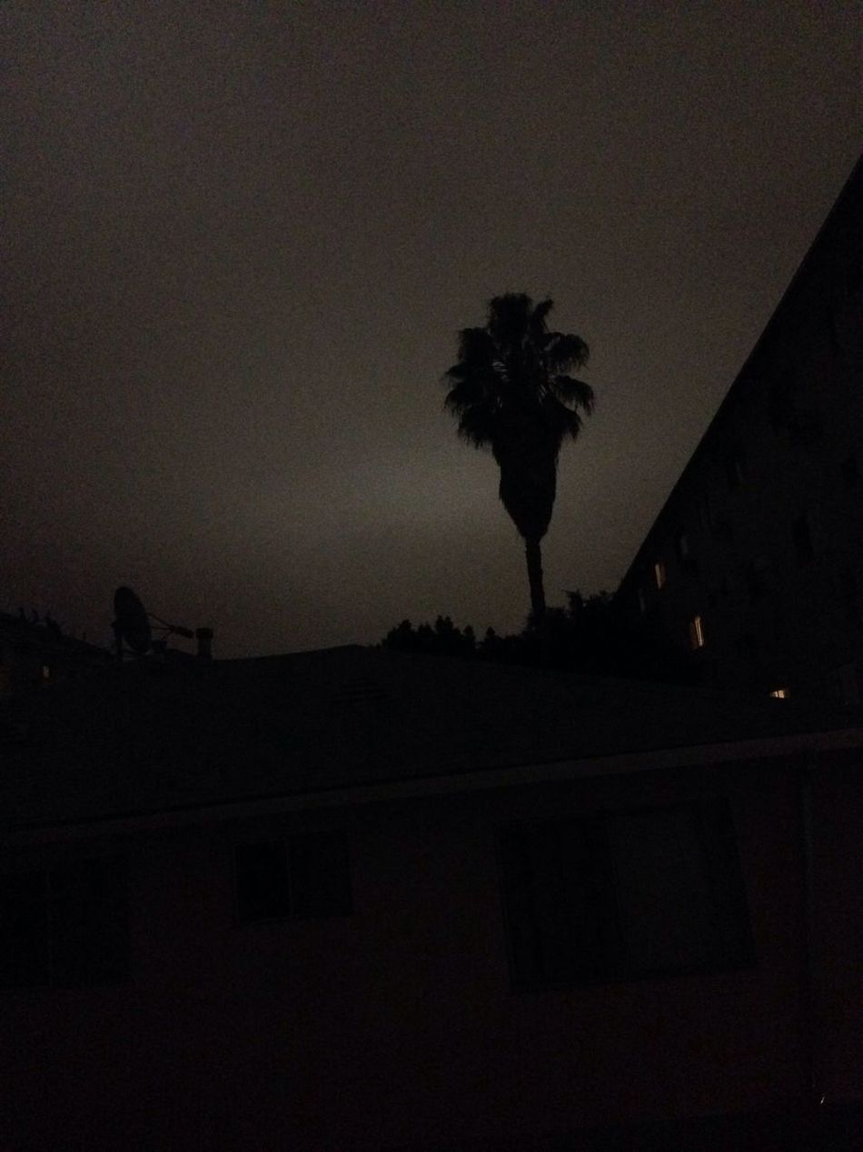 Goodnight Hollywood