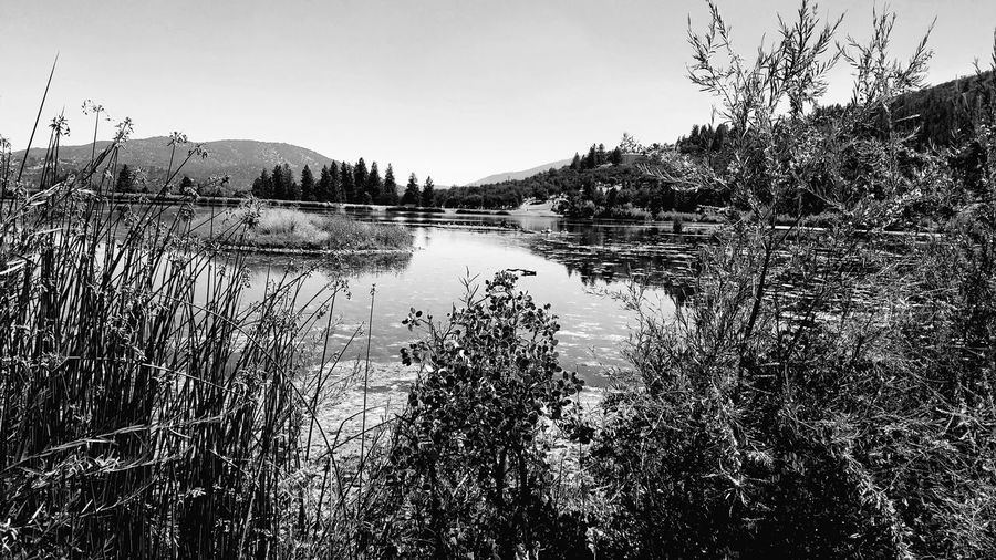 The very stillness at The Lake... Water Outdoors Mountain Sky Black And White Backgrounds Symmetry Rewilding Zen Meditation Tranquility Landscape Lake Grasses Tall Grasses Nature Stillness Contemplation Contemplating Life LivingJourney Silence Dream