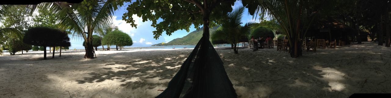 Hammock View. Hammock Swinging Beach View Panarama Jungle Palm Trees Relaxing Peaceful Deserted Beach Out To Sea Thailand Stunning Beach Miami Beach In The Shade Shadows And Light Blue Sky Spotted In Thailand Koh Phangan Miami Beach Chaloklum