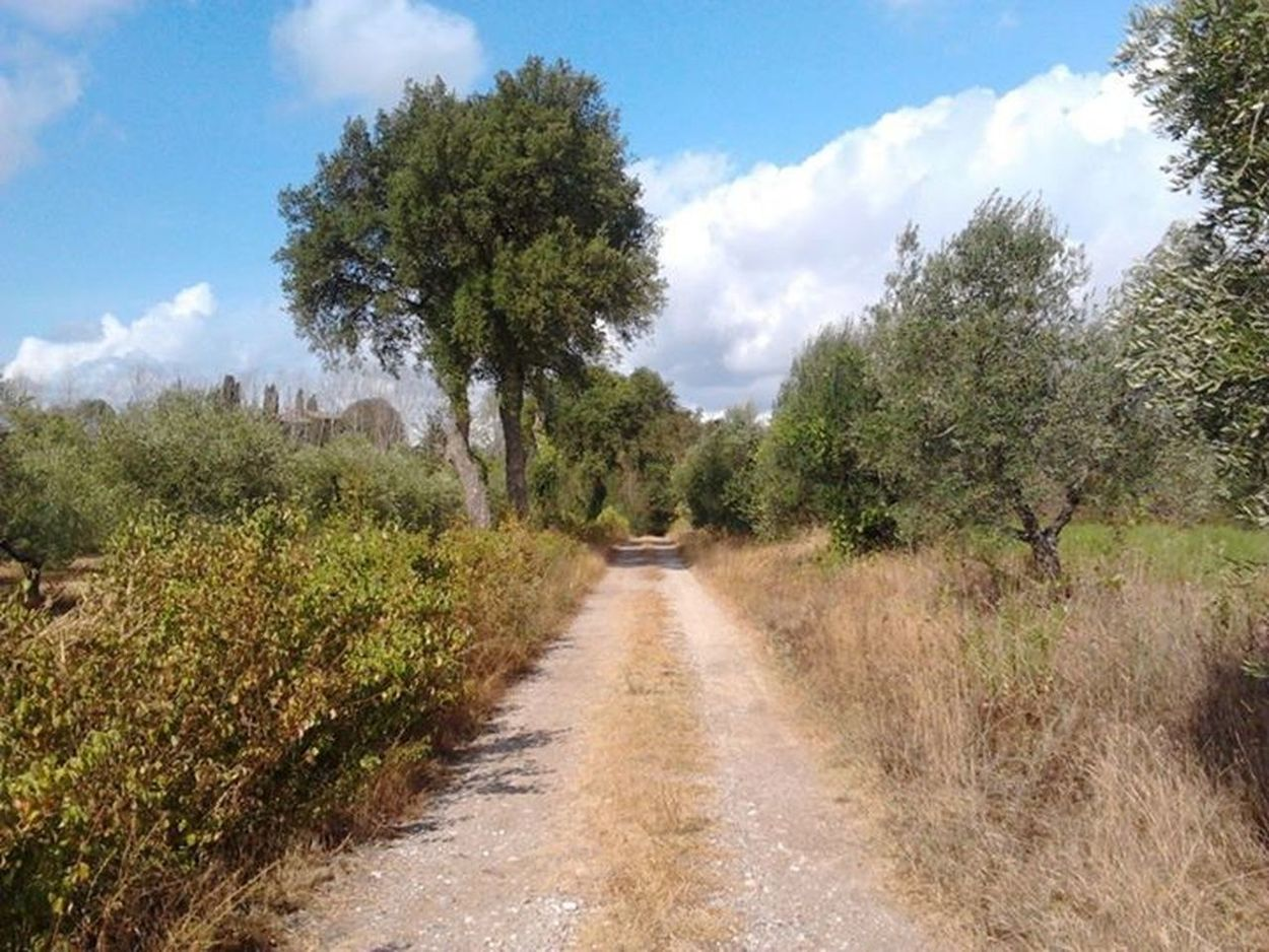 Tuscany Natural Landscapes Nature Hamlet of Porcareccia