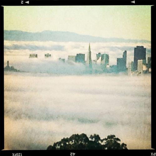 San Francisco Floating