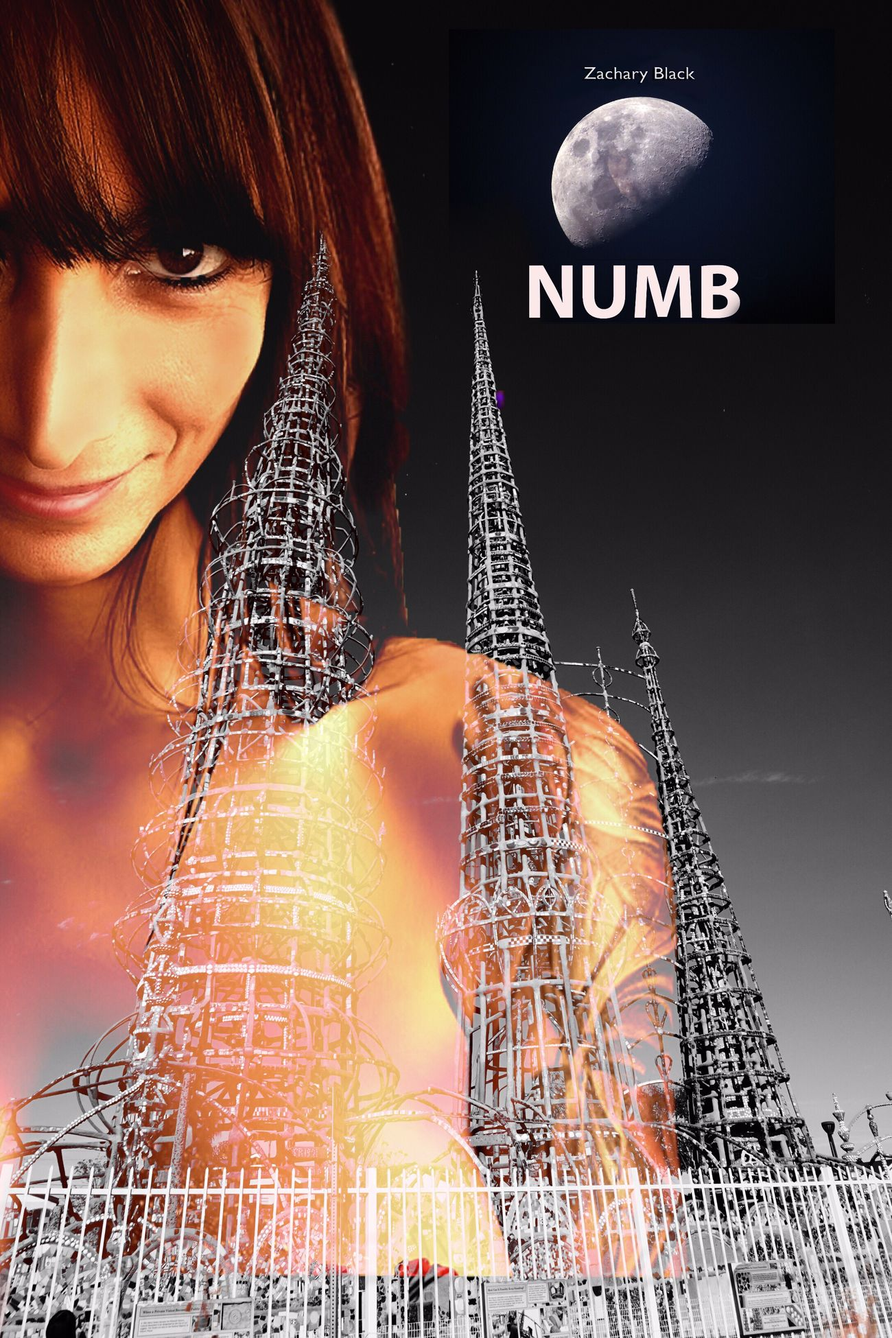 New Zachary Black album 'NUMB' coming Soon. Sexygirl Armenian Girls Rock N Roll Rock Chick Music Poster Indie Alternative Music Watts Towers