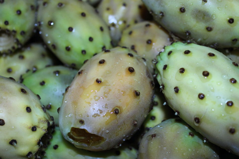 RePicture Wealth Passion Fruit Fico Terra Sarda