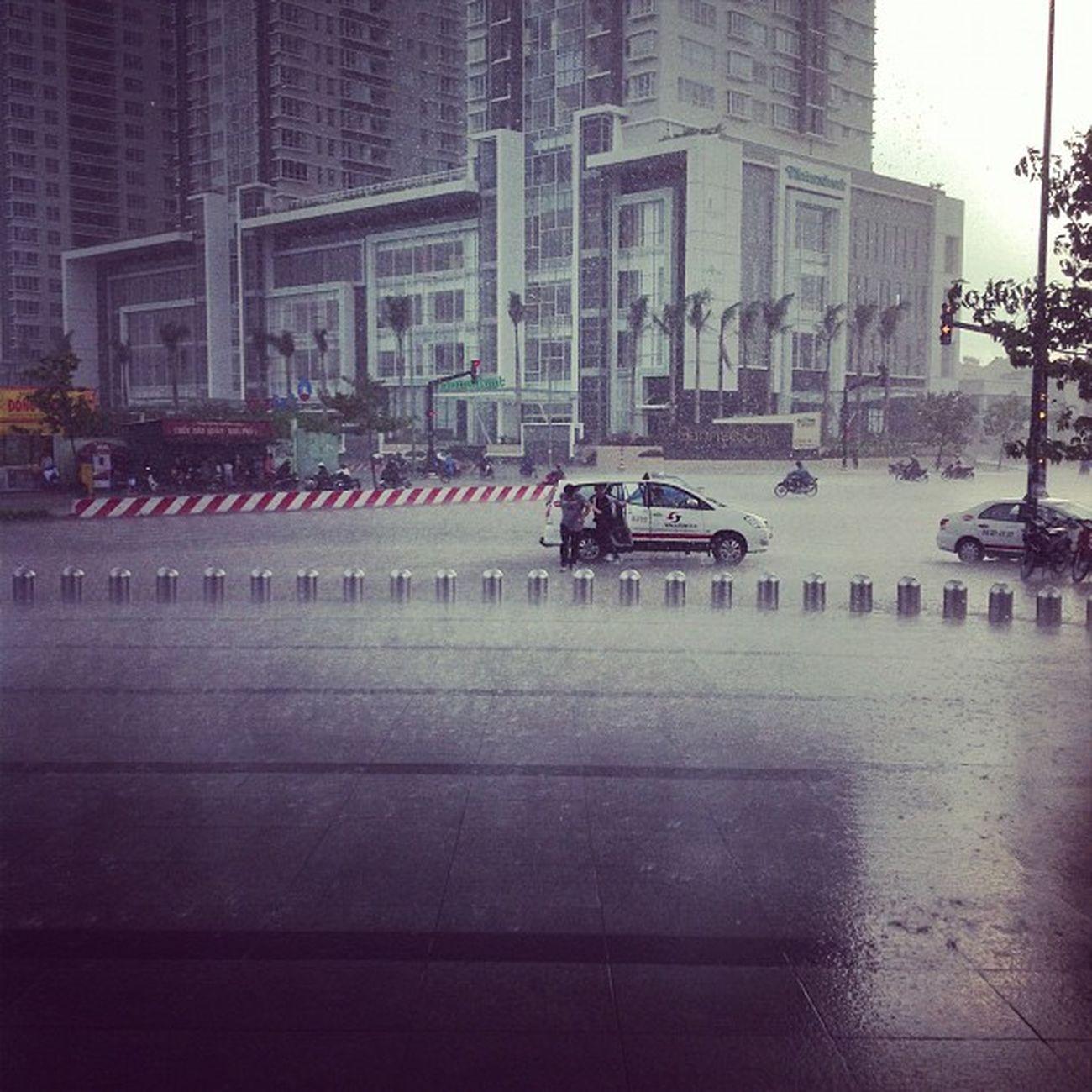 Và cơn mưa lại bắt đầu...
