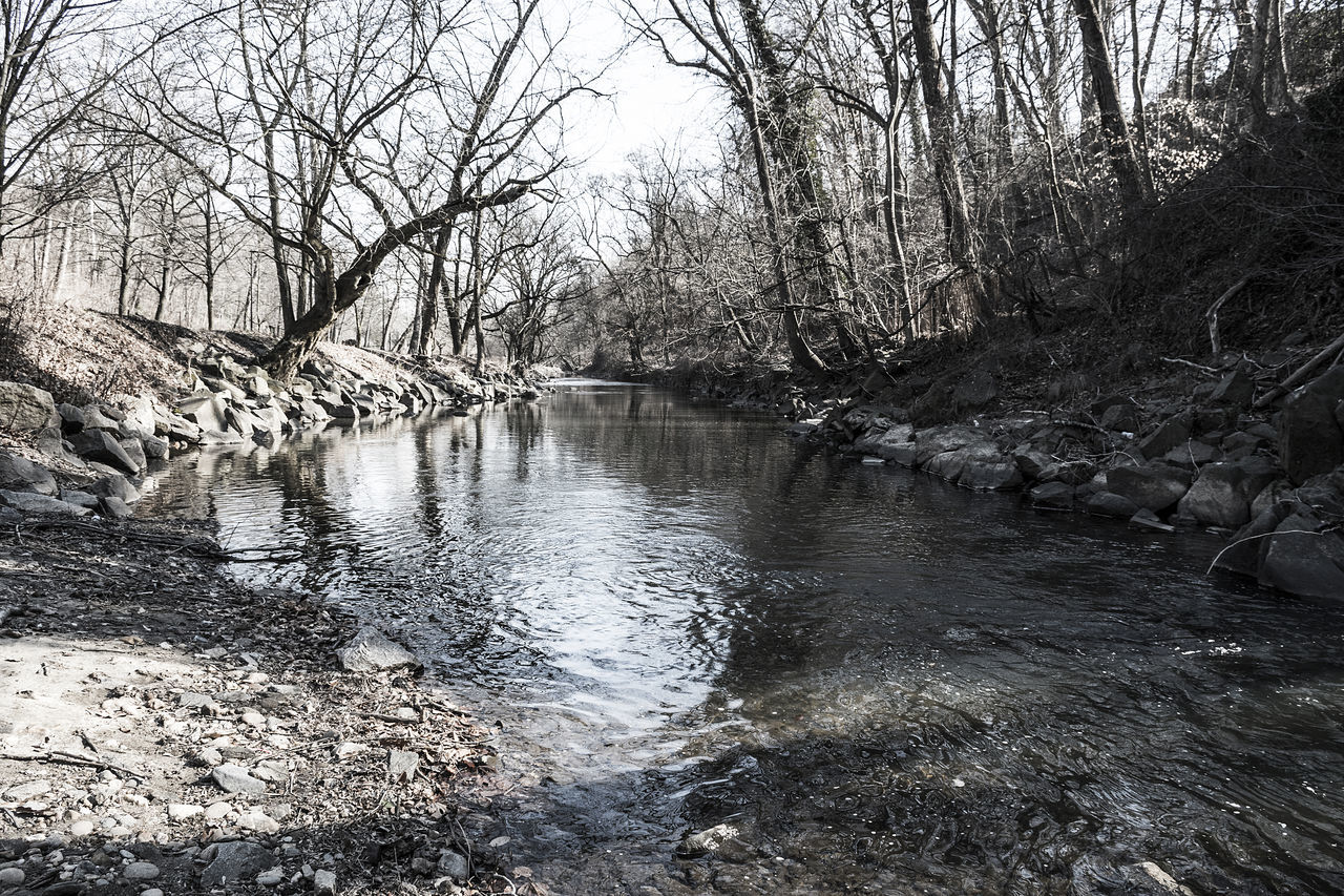 Rock Creek Park, Washington DC Bare Tree Beauty In Nature Blackandwhite Day Light And Shadow Nature Nature No People Outdoors Reflection River River View Rocks Rocks And Water Scenics Sky Stream - Flowing Water Tranquil Scene Tranquility Travel Destinations Tree Water Water Reflections