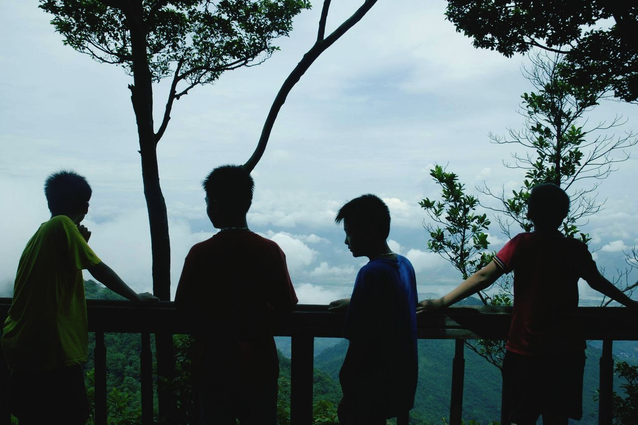 tree, real people, sky, standing, outdoors, men, silhouette, nature, day, lifestyles, togetherness, friendship, growth, beauty in nature, people