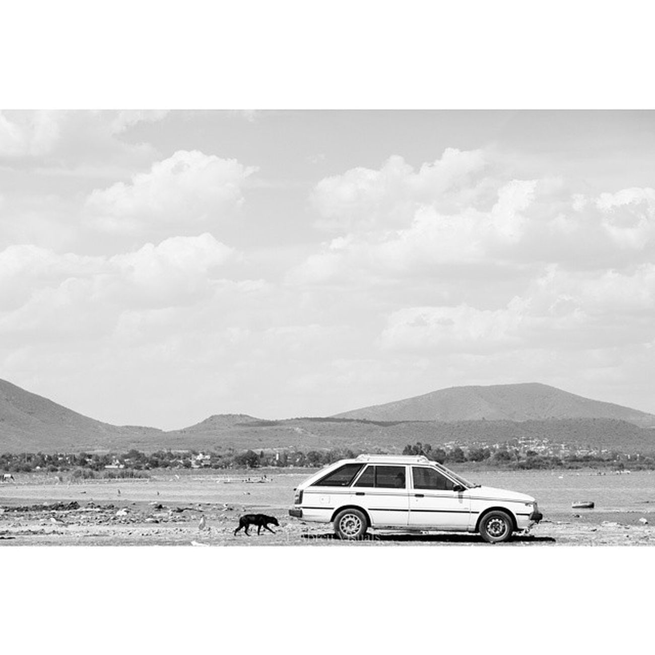 Abandoned Mexico Eabreumexico Jalisco Residency chapala photography artist mexico2014 dog car mountains