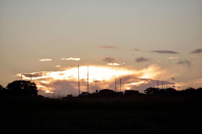 Sunset @ phoenix park Atmosphere Atmospheric Mood Beauty In Nature Calm Cloud Cloud - Sky Dark Dramatic Sky Landscape Majestic Moody Sky Nature No People Non-urban Scene Orange Color Outdoors Outline Scenics Silhouette Sky Sun Sunset Tranquil Scene Tranquility Vibrant Color