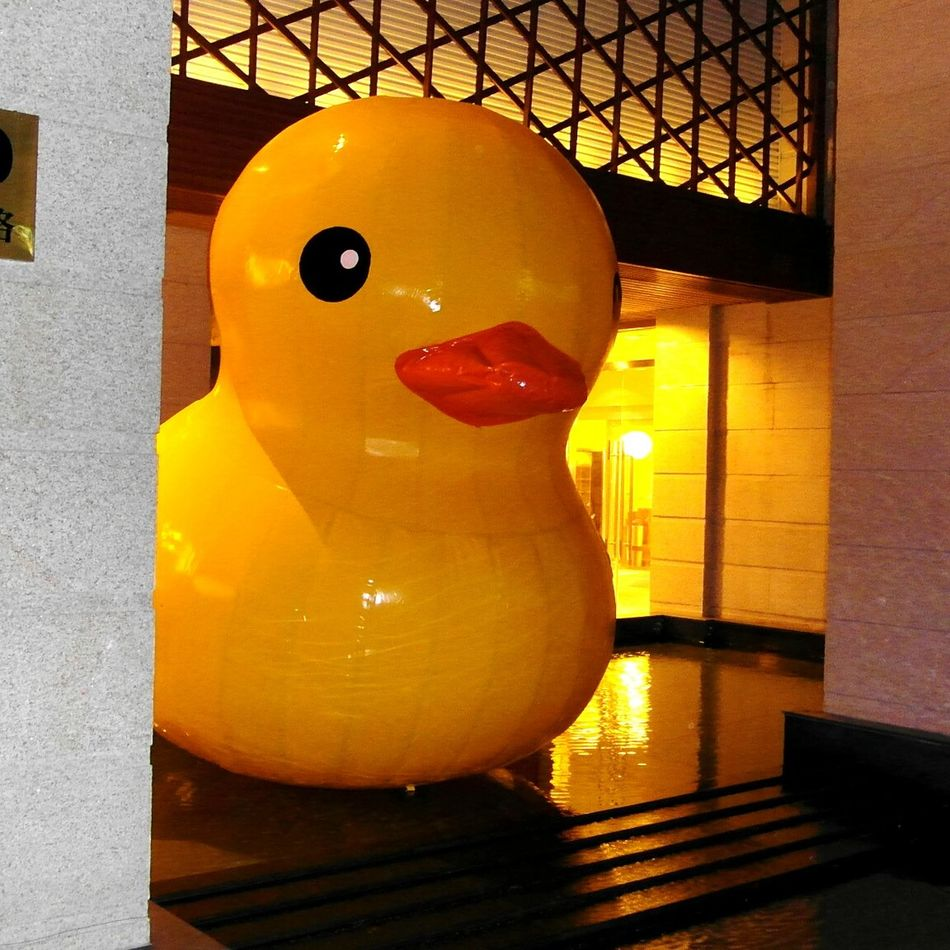 Yellow Duck Plastic Art Looking At Camera Close-up No People Animal Themes Gelb Ente Entrance Stairs Curious EyeEm Traveling