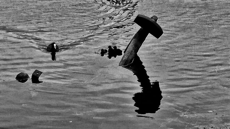 Check This Out Blackandwhite Photography