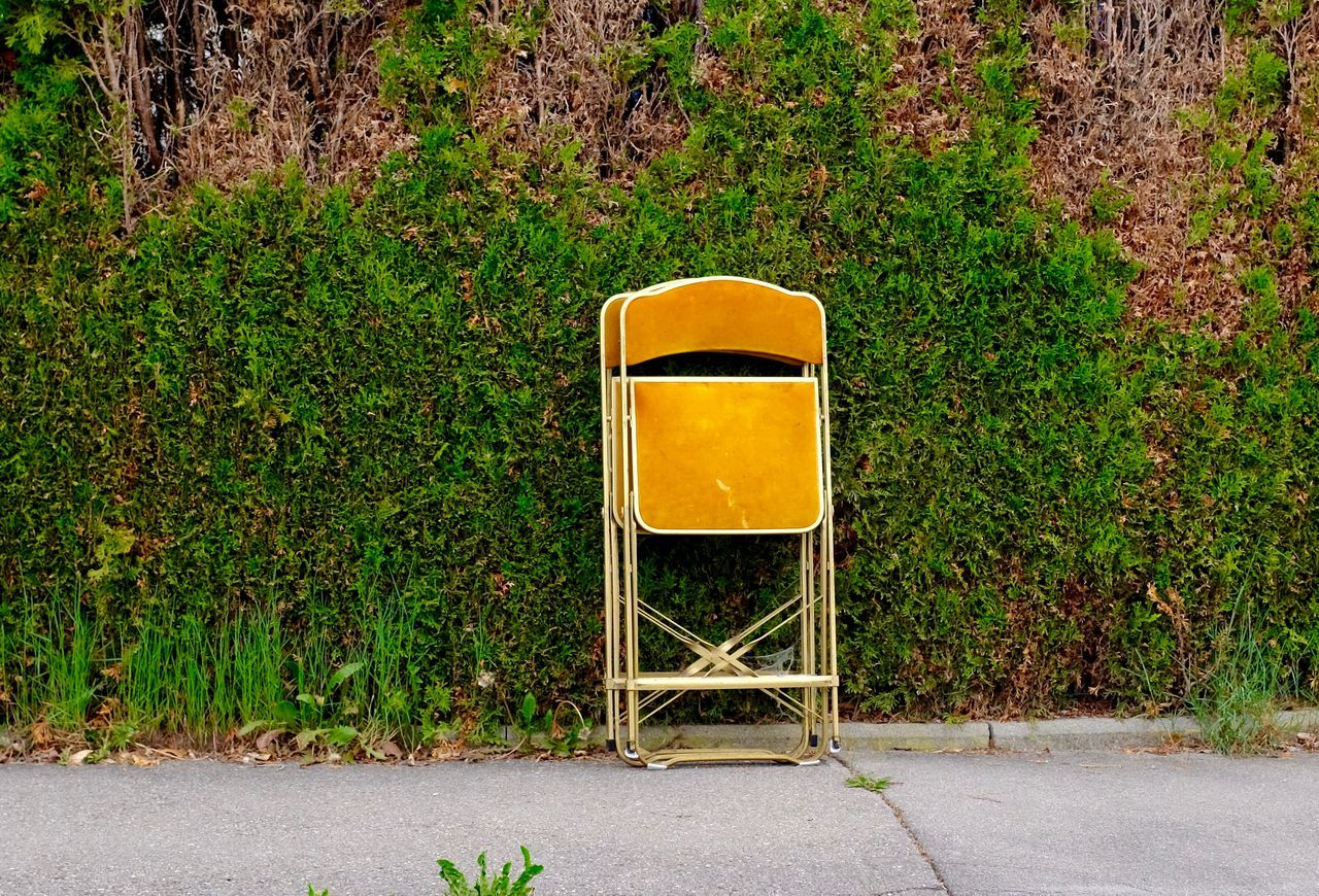 Folding Chairs Leaning Against Plants