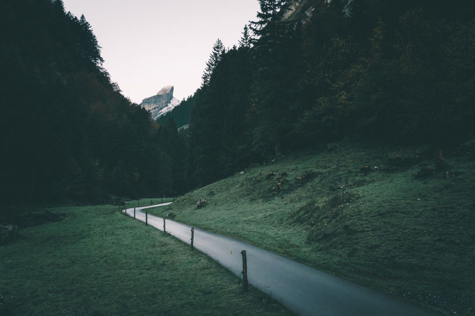 Peaceful early morning mood in the Swiss Alps Alps Dark Dawn Dawn Of A New Day Early G Grass Lonely Monochrome Moody Morning Light Mountain Peak Mountain Road Nature Path Peaceful Peak Pre Sunrise Road Schweiz Seealpsee Swiss Tones Tranquility Walking Path