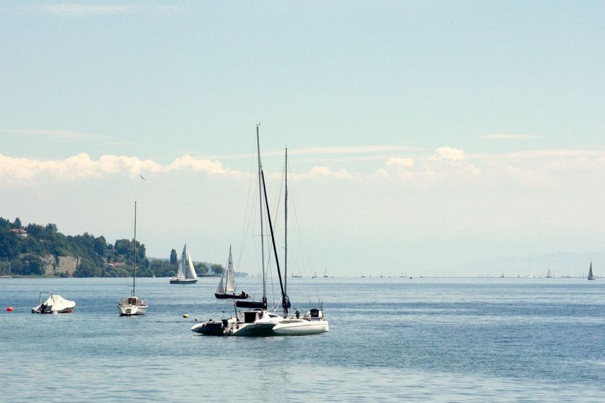 Beauty In Nature Bodensee Bodensee <3 Cloud - Sky Day Horizon Over Water Mast Mode Of Transport Nature Nautical Vessel No People Outdoors Sailboat Sailing Sailing Boats Scenics Sea Segelboot Segeln Segelschiff Sky Transportation Water Waterfront Yacht