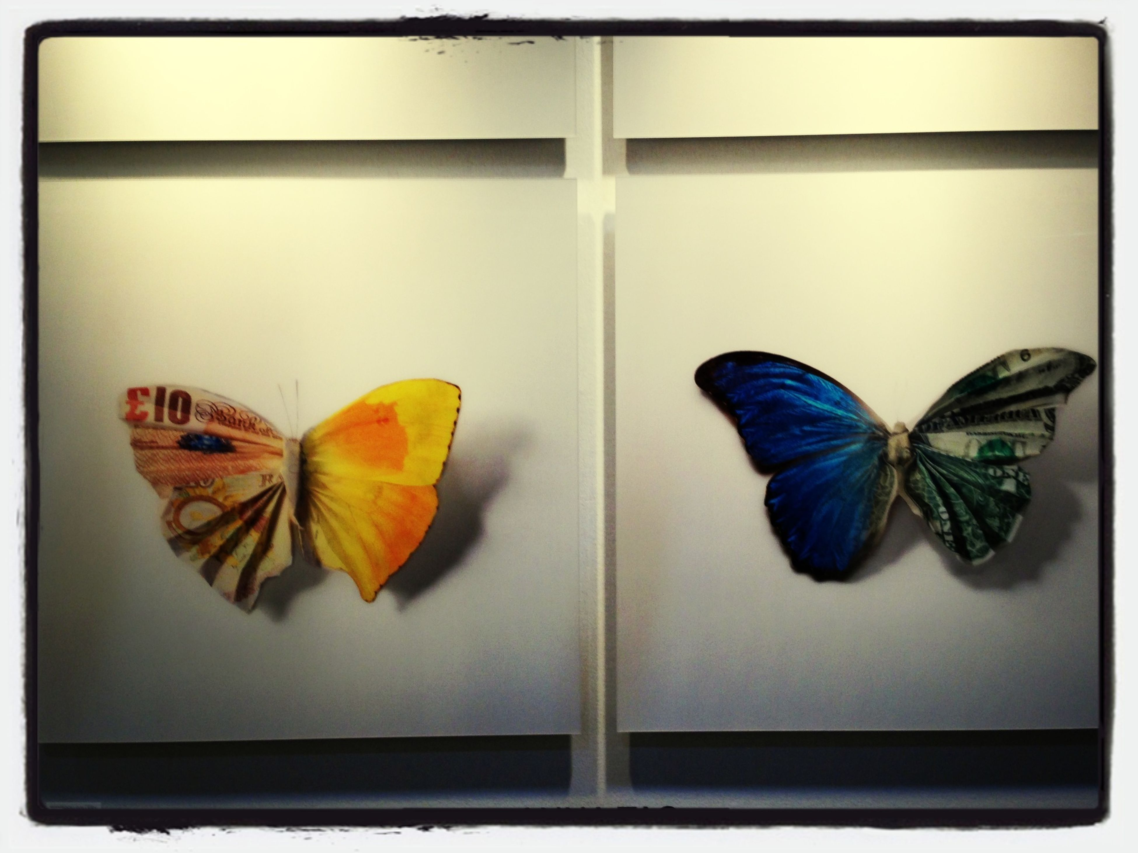 indoors, insect, close-up, wildlife, animal themes, auto post production filter, transfer print, multi colored, no people, butterfly - insect, still life, butterfly, leaf, animals in the wild, wall - building feature, pattern, variation, day, one animal, art and craft