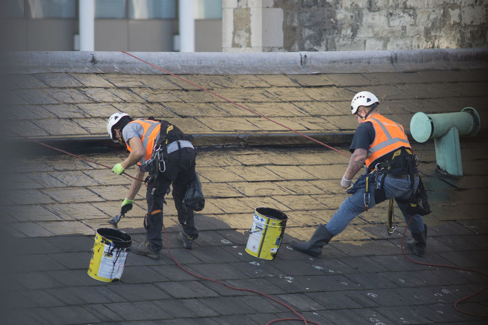 Adult Adults Only Business Day Employee Employees Full Length Maintaining Outdoors People Repair Roof Work Safety Workmen