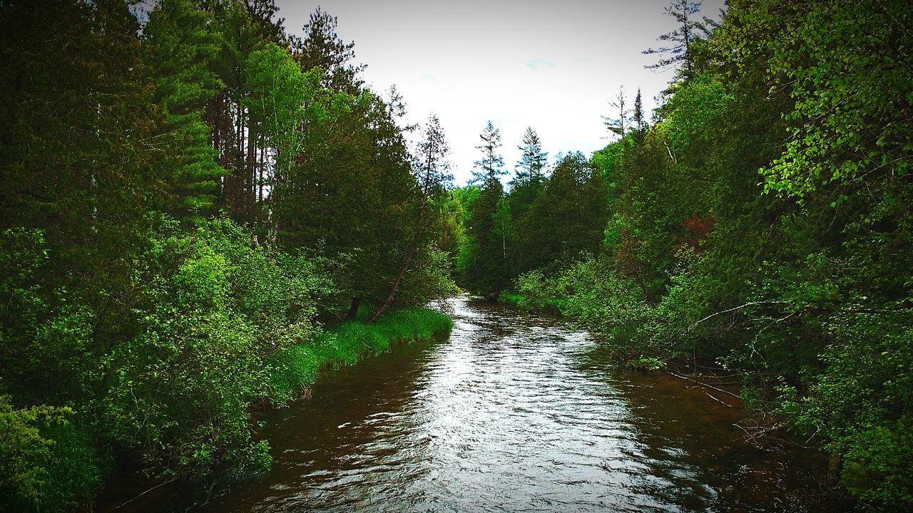 Rivers Edge Rivers And Streams Rivers And Trees Eyeem Marketplace Natural Landscape Eyeem Nature Eyeem Trending