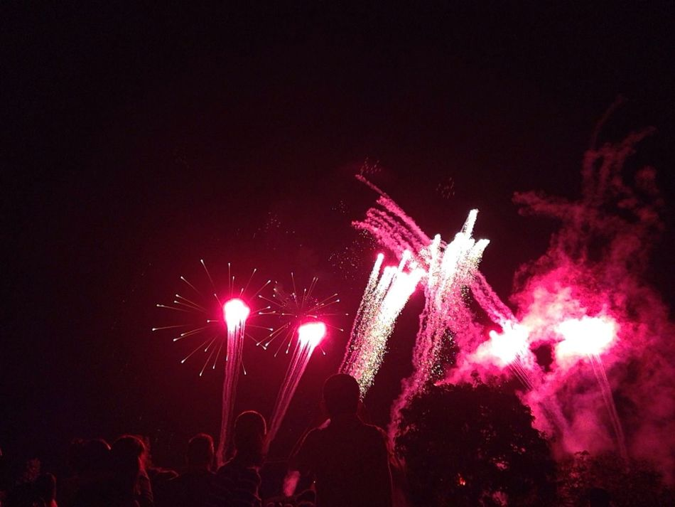 Disneyland Disney Fireworks Show