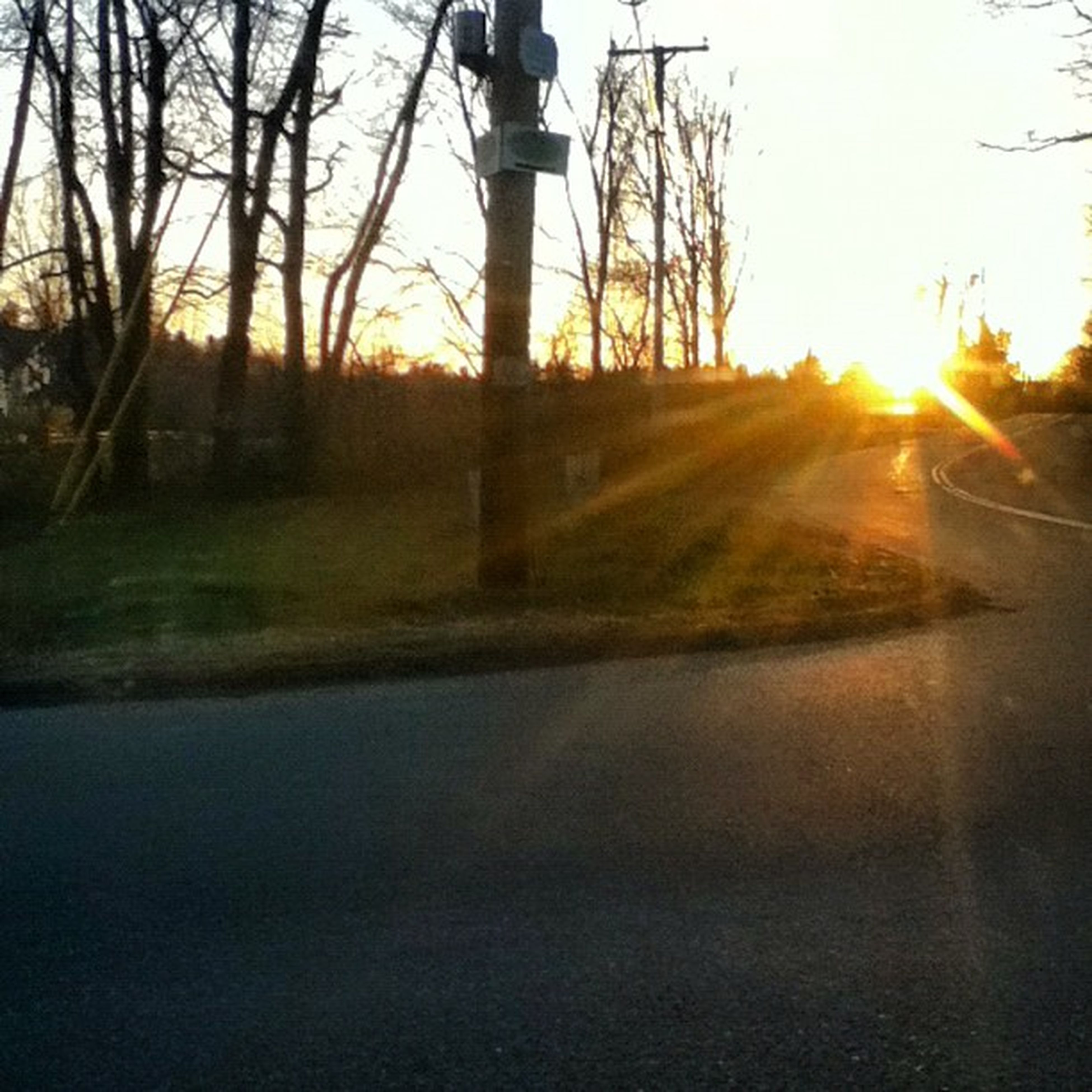 sun, sunset, sunbeam, sunlight, lens flare, tree, silhouette, transportation, orange color, sky, road, back lit, clear sky, car, tranquility, street, nature, reflection, bright, tranquil scene