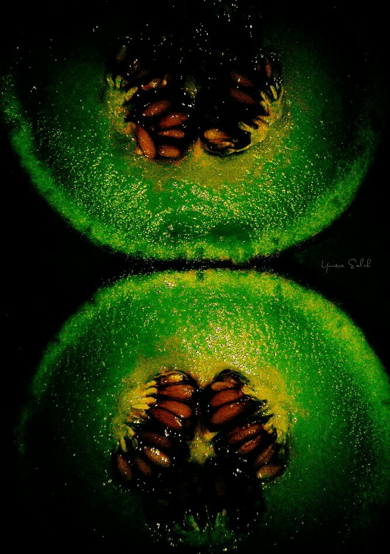 Cantaloupe Cantaloup Cantalope Seeds Cantalop Seeds Greencantaloup Green Cantaloupe Fruit Seed Fruit Seeds Fruitseeds Fruits Fruit Fruits ♡ Fresh Fruits Fresh Food Fresh Fresh Produce Fresh Fresh Fresh Healthy Eating Healthy Food Food Collection FoodFood Porn Black Background Close-up Details 🍈