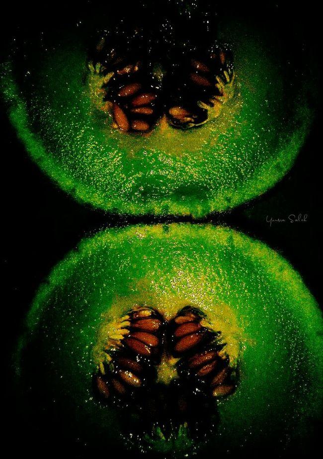 Cantaloupe Cantaloup Cantalope Seeds Cantalop Seeds Greencantaloup Green Cantaloupe Fruit Seed Fruit Seeds Fruitseeds Fruits Fruit Fruits ♡ Fresh Fruits Fresh Food Fresh Fresh Produce Fresh Fresh Fresh Healthy Eating Healthy Food Food Collection FoodFood Porn Black Background Close-up Details 🍈