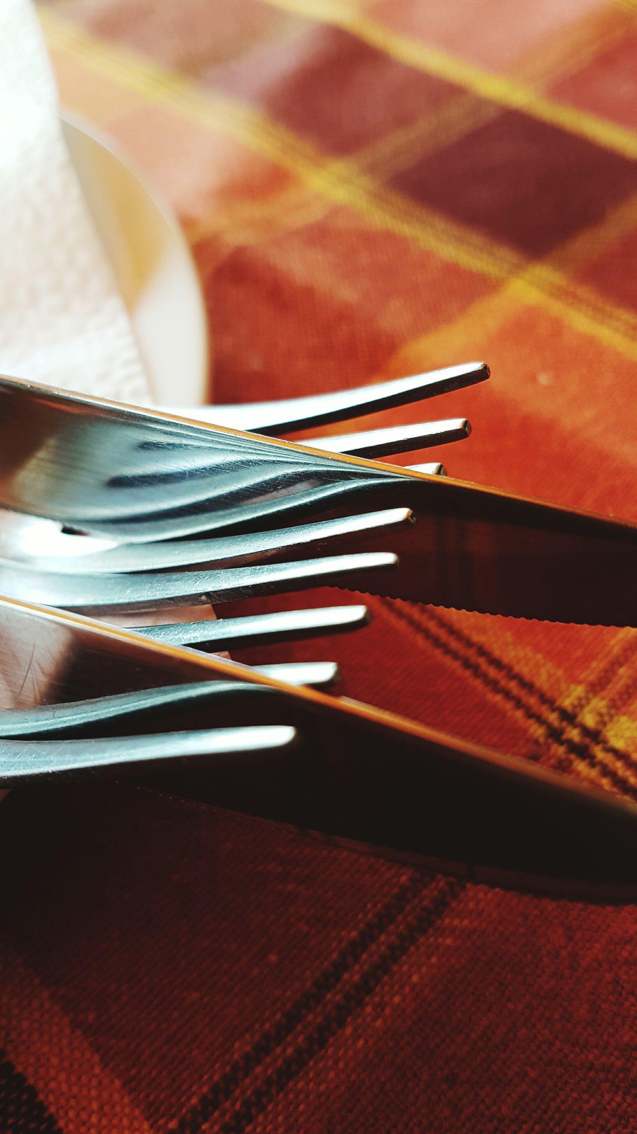Fork Close-up