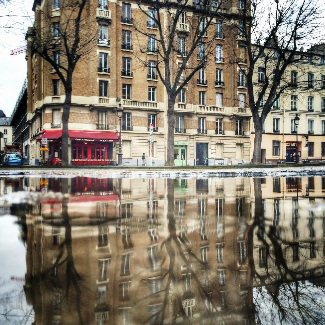 Reflection Winter Tree Paris