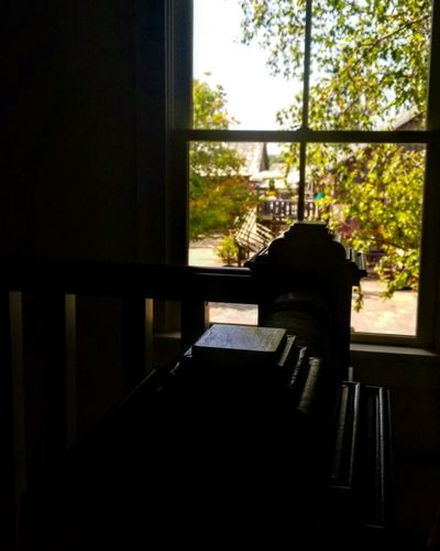 Window Indoors  No People Day Tree