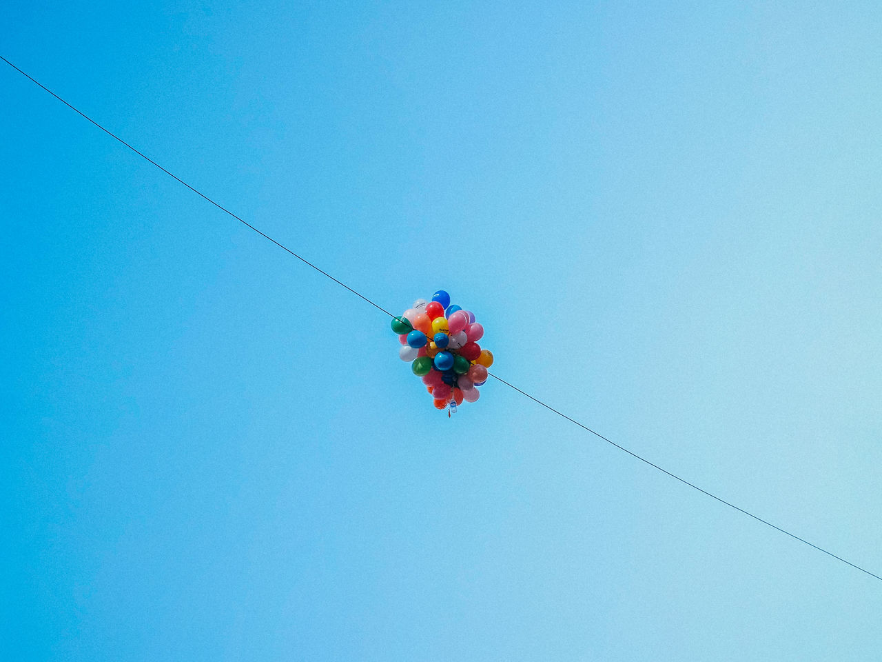 Baloons Blue Cable Clear Sky Copy Space Day Flower Flying Hanging Low Angle View Multi Colored Nature No People Outdoors Sky