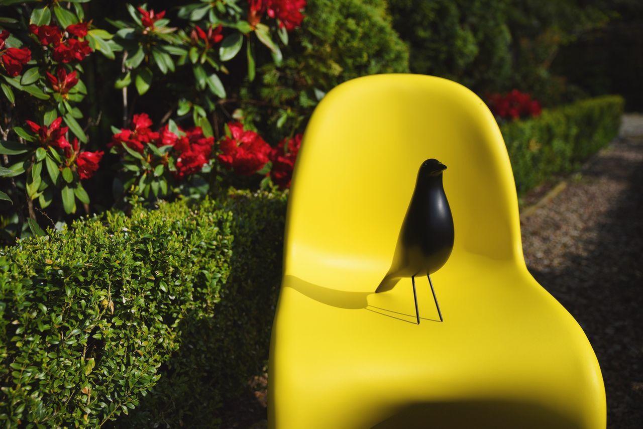 Spring Colorful Design Vitra Panton Eames Garden Flowers