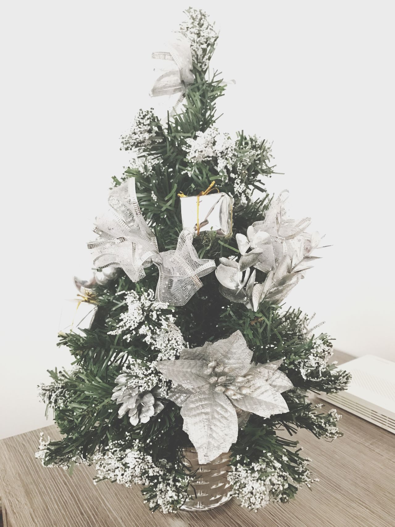 Tree Studio Shot No People Archival Tradition Christmas Christmas Decoration Evergreen Tree Christmas Tree Wreath White Background Indoors  Nature Freshness Day