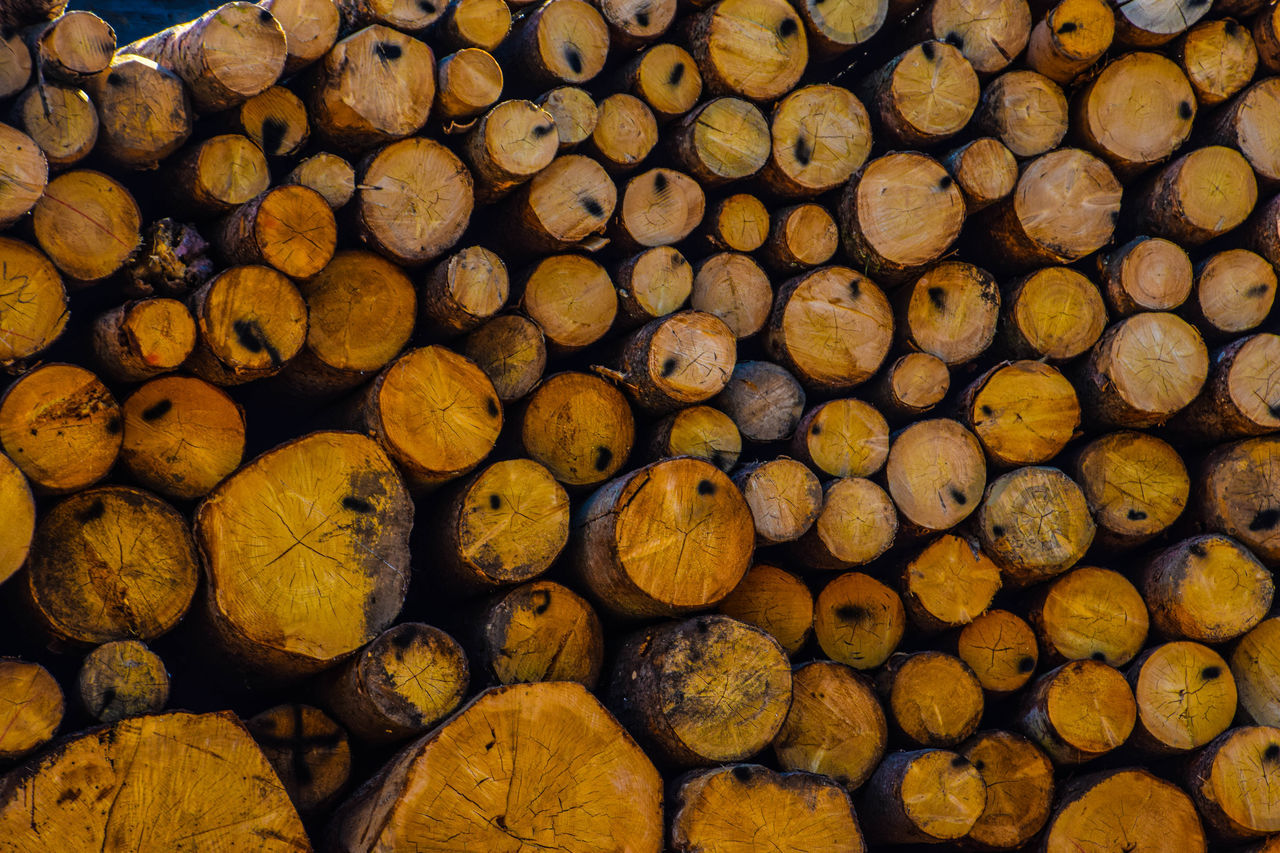 stack, log, large group of objects, timber, full frame, abundance, heap, backgrounds, lumber industry, woodpile, deforestation, no people, fuel and power generation, forestry industry, close-up, day, outdoors, nature