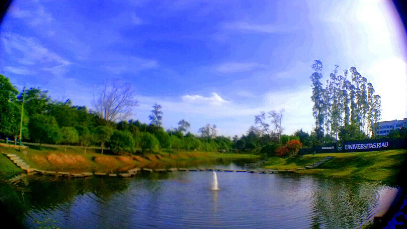 Universitas Riau Universitas Of Riau Nature_collection Beautiful Nature Enjoying Nature Naturephotography I Love Riau I Love Indonesia INDONESIA EyemIndonesia