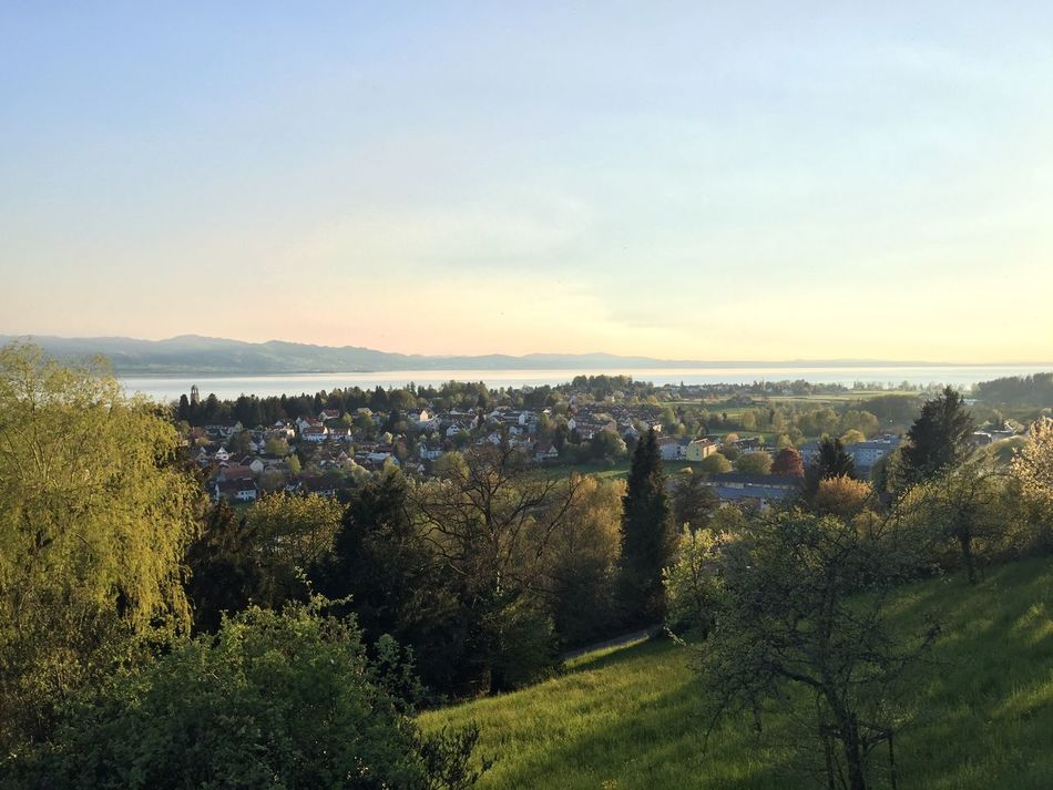 Ilse of Lindau, Lake of Constance AlpenLoge Alpenpanorama Beauty In Nature Day Green Color Growth Hill Hoyerberg Idyllic Landscape Lindau Nature Outdoors Scenics Sky Tranquil Scene Tranquility